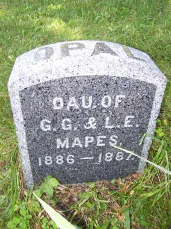 MAPES, OPAL - Tazewell County, Illinois | OPAL MAPES - Illinois Gravestone Photos