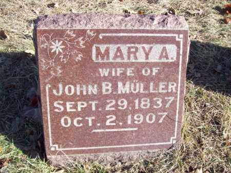 MULLER, MARY A - Tazewell County, Illinois | MARY A MULLER - Illinois Gravestone Photos