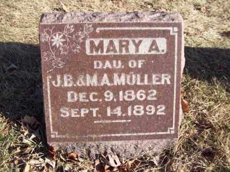 MULLER, MARY A - Tazewell County, Illinois   MARY A MULLER - Illinois Gravestone Photos
