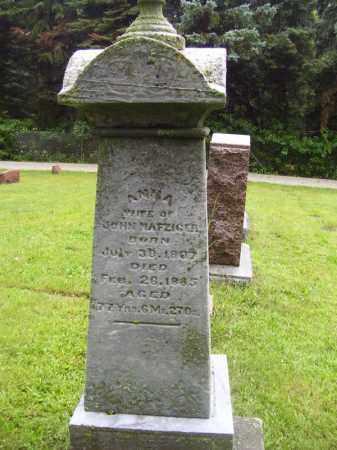 NAFZIGER, ANNA - Tazewell County, Illinois | ANNA NAFZIGER - Illinois Gravestone Photos