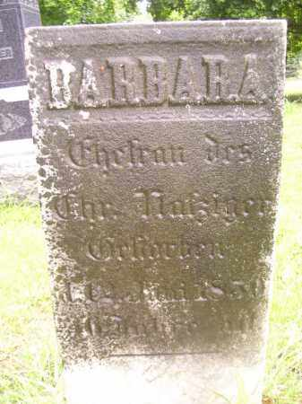 NAFZIGER, BARBARA - Tazewell County, Illinois | BARBARA NAFZIGER - Illinois Gravestone Photos