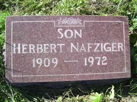 NAFZIGER, HERNERT - Tazewell County, Illinois   HERNERT NAFZIGER - Illinois Gravestone Photos