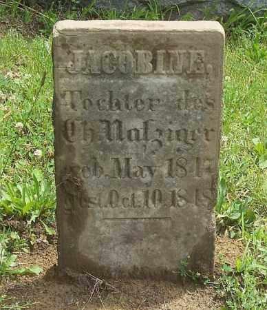 NAFZIGER, JACOBINE - Tazewell County, Illinois | JACOBINE NAFZIGER - Illinois Gravestone Photos