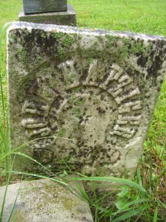 NAFZIGER, JOHN - Tazewell County, Illinois   JOHN NAFZIGER - Illinois Gravestone Photos