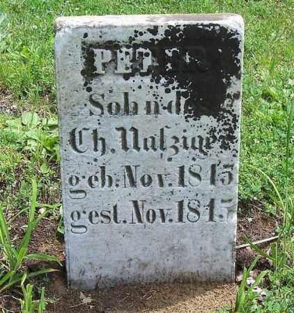 NAFZIGER, PETER - Tazewell County, Illinois | PETER NAFZIGER - Illinois Gravestone Photos