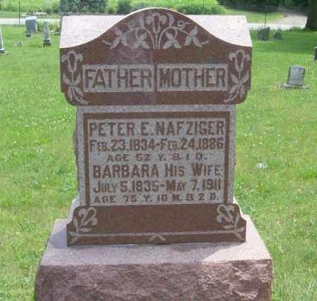 NAFZIGER, PETER E - Tazewell County, Illinois | PETER E NAFZIGER - Illinois Gravestone Photos