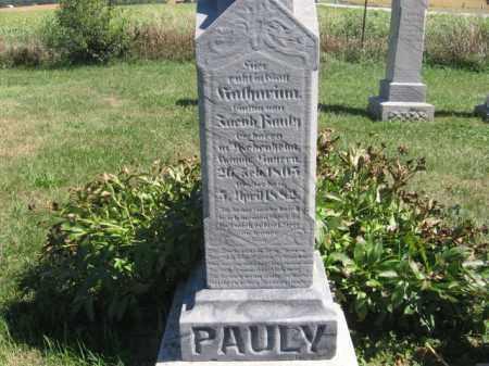 PAULY, KATHERINA - Tazewell County, Illinois | KATHERINA PAULY - Illinois Gravestone Photos