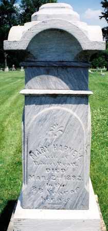 HARVEY PRATT, MARY - Tazewell County, Illinois | MARY HARVEY PRATT - Illinois Gravestone Photos