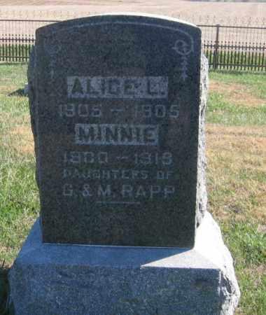 RAPP, ALICE - Tazewell County, Illinois | ALICE RAPP - Illinois Gravestone Photos