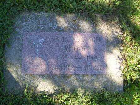 NOFSINGER RHODES, ANITA - Tazewell County, Illinois | ANITA NOFSINGER RHODES - Illinois Gravestone Photos