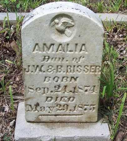 RISSER, AMALIA - Tazewell County, Illinois   AMALIA RISSER - Illinois Gravestone Photos