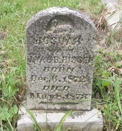RISSER, JOSHUA - Tazewell County, Illinois   JOSHUA RISSER - Illinois Gravestone Photos