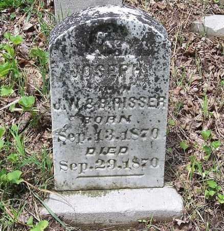 RISSER, JOSEPH - Tazewell County, Illinois | JOSEPH RISSER - Illinois Gravestone Photos