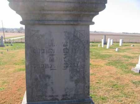 ROBISON, MARY - Tazewell County, Illinois | MARY ROBISON - Illinois Gravestone Photos