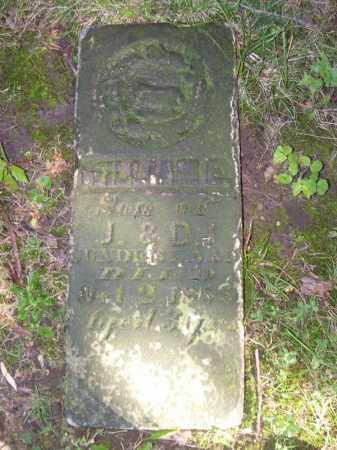 SUNDERLAND, WILLIAM E - Tazewell County, Illinois | WILLIAM E SUNDERLAND - Illinois Gravestone Photos