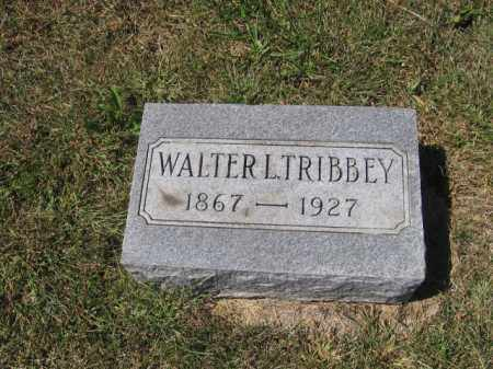 TRIBBEY, WALTER L - Tazewell County, Illinois   WALTER L TRIBBEY - Illinois Gravestone Photos