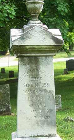 TRIPLETT, REUBEN - Tazewell County, Illinois | REUBEN TRIPLETT - Illinois Gravestone Photos