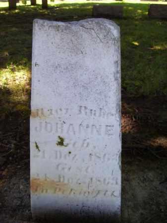 UNKNOWN, JOHANNE - Tazewell County, Illinois | JOHANNE UNKNOWN - Illinois Gravestone Photos