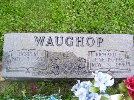 WAUGHOP, RICHARD E - Tazewell County, Illinois | RICHARD E WAUGHOP - Illinois Gravestone Photos
