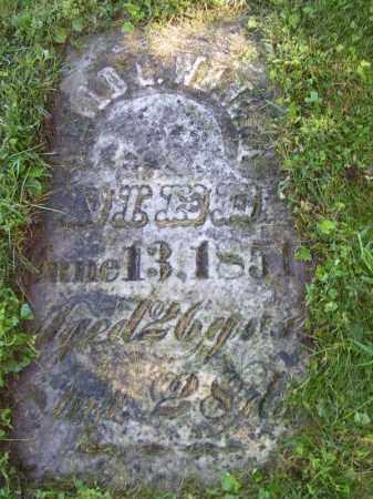 WENGER, DAVID G - Tazewell County, Illinois | DAVID G WENGER - Illinois Gravestone Photos