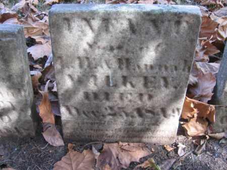 WILKEY, INFANT - Tazewell County, Illinois | INFANT WILKEY - Illinois Gravestone Photos