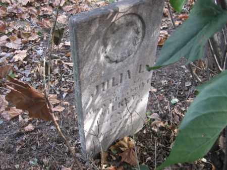 WILKEY, JULIA - Tazewell County, Illinois | JULIA WILKEY - Illinois Gravestone Photos