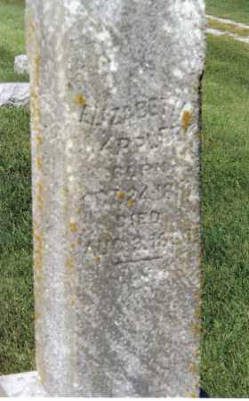 APPLEBY, ELIZABETH - Warren County, Illinois | ELIZABETH APPLEBY - Illinois Gravestone Photos