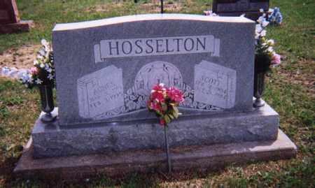 HOSSELTON, SCOTT - Wayne County, Illinois | SCOTT HOSSELTON - Illinois Gravestone Photos