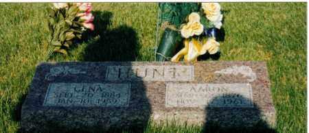 HUNT, CENA - Wayne County, Illinois | CENA HUNT - Illinois Gravestone Photos