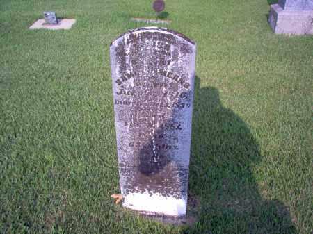 GRAY MEANS, LOUISA - Wayne County, Illinois   LOUISA GRAY MEANS - Illinois Gravestone Photos