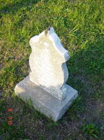SHARP, ELANOR Y. - Wayne County, Illinois | ELANOR Y. SHARP - Illinois Gravestone Photos