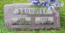 BRONDYKE, ANNE - Whiteside County, Illinois | ANNE BRONDYKE - Illinois Gravestone Photos