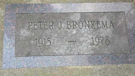 BRONKEMA, PETER J. - Whiteside County, Illinois | PETER J. BRONKEMA - Illinois Gravestone Photos