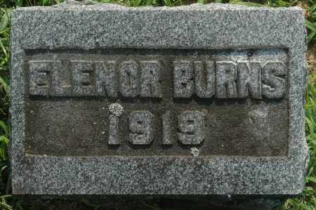 BURNS, ELENOR - Whiteside County, Illinois   ELENOR BURNS - Illinois Gravestone Photos
