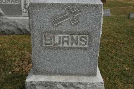 BURNS, FAMILY MONUMENT - Whiteside County, Illinois | FAMILY MONUMENT BURNS - Illinois Gravestone Photos