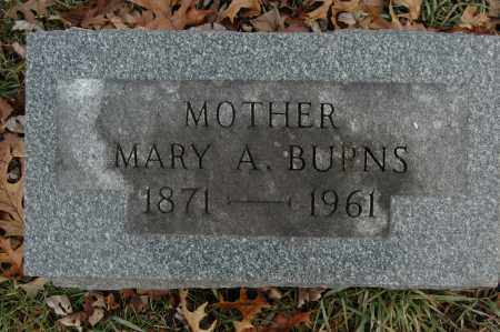 BURNS, MARY A. - Whiteside County, Illinois | MARY A. BURNS - Illinois Gravestone Photos