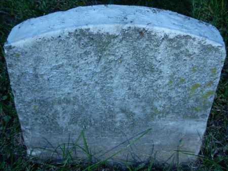 LUSK, CHESTER - Whiteside County, Illinois   CHESTER LUSK - Illinois Gravestone Photos