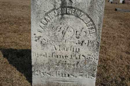 MARTIN, SARAH JANE ELIZABETH - Whiteside County, Illinois | SARAH JANE ELIZABETH MARTIN - Illinois Gravestone Photos