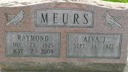 MEURS, RAYMOND - Whiteside County, Illinois | RAYMOND MEURS - Illinois Gravestone Photos