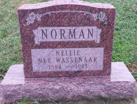 NORMAN, NELLIE - Whiteside County, Illinois | NELLIE NORMAN - Illinois Gravestone Photos