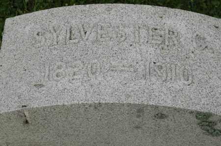 SARDAM, SYLVESTER - Whiteside County, Illinois | SYLVESTER SARDAM - Illinois Gravestone Photos