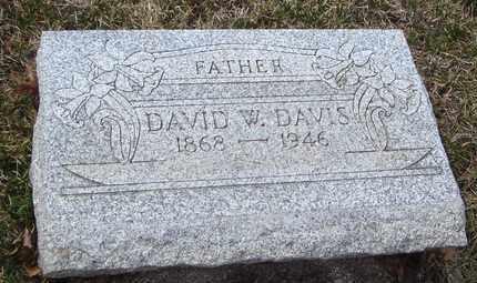 DAVIS, DAVID W. - Will County, Illinois | DAVID W. DAVIS - Illinois Gravestone Photos