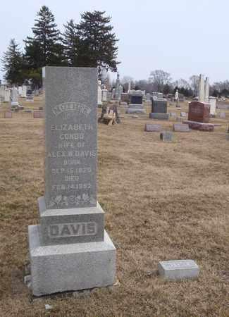 DAVIS, ELIZABETH - Will County, Illinois | ELIZABETH DAVIS - Illinois Gravestone Photos