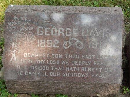 DAVIS, GEORGE - Will County, Illinois | GEORGE DAVIS - Illinois Gravestone Photos
