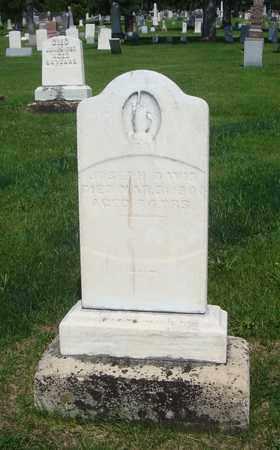 DAVIS, JOSEPH - Will County, Illinois | JOSEPH DAVIS - Illinois Gravestone Photos