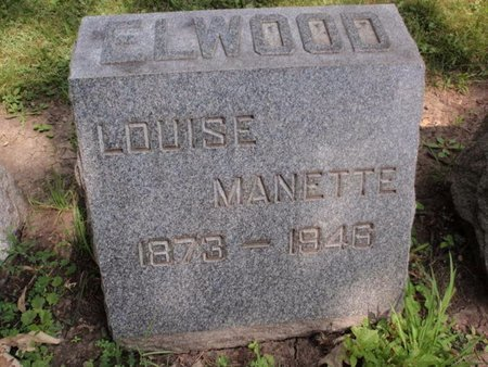 ELWOOD, LOUISE - Will County, Illinois | LOUISE ELWOOD - Illinois Gravestone Photos