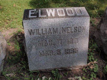 ELWOOD, WILLIAM NELSON - Will County, Illinois | WILLIAM NELSON ELWOOD - Illinois Gravestone Photos