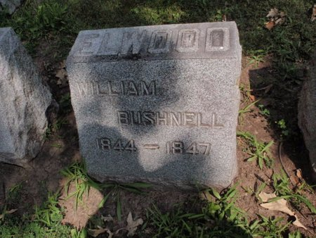 ELWOOD, WILLIAM BUSHNELL - Will County, Illinois | WILLIAM BUSHNELL ELWOOD - Illinois Gravestone Photos