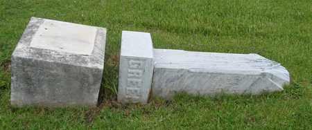 GREEN, CHARLES - Will County, Illinois | CHARLES GREEN - Illinois Gravestone Photos
