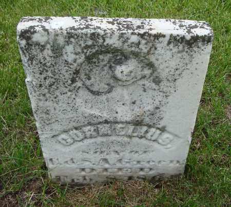 GREEN, CORNELIUS - Will County, Illinois   CORNELIUS GREEN - Illinois Gravestone Photos